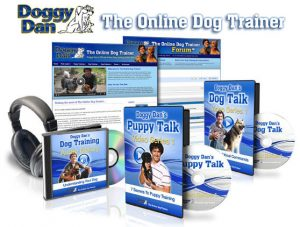 puppy training with doggy dan